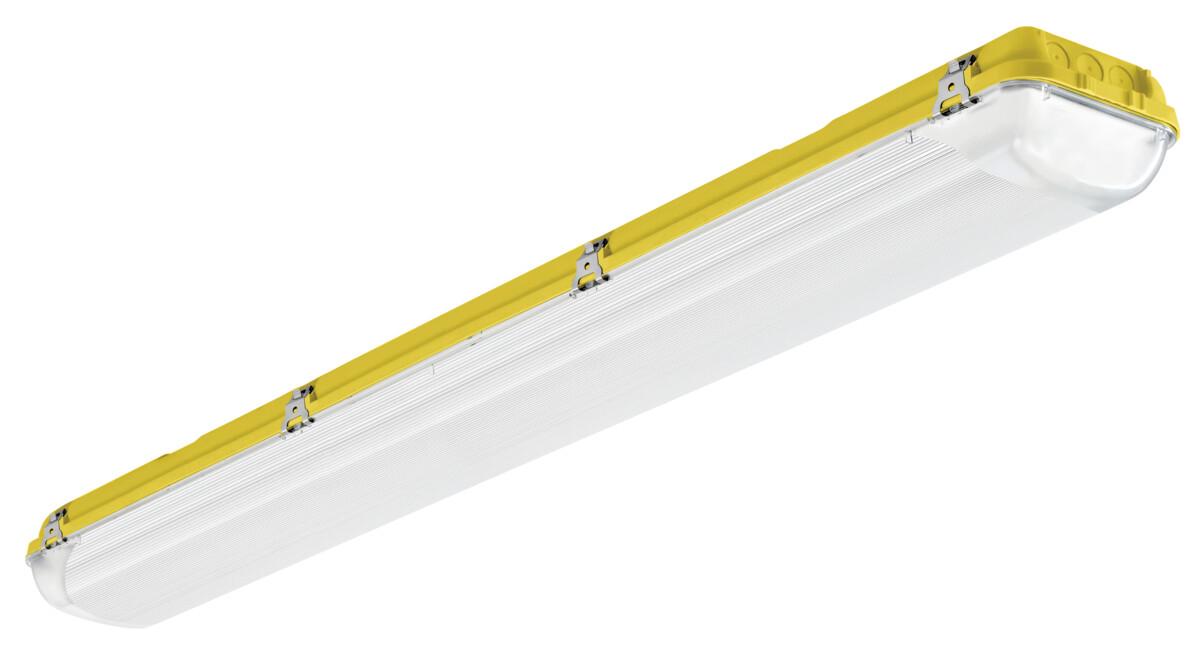 ACQUEX LED